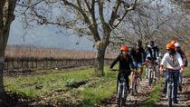 Full-Day Private Maipo Valley Bike Tour and Wine Tasting from Santiago, Santiago