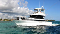 6 hours Professional Fishing Charter, Punta Cana, Fishing Charters & Tours