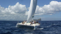 Full Day Catamaran Cruise on the Pacha in the North of Mauritius, Grand Baie