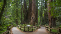 Muir Woods, Wine Country and Sausalito Town & Ferry, San Francisco, Food Tours