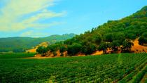 Napa Valley Wine Country Tour, San Francisco, Wine Tasting & Winery Tours