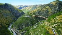 Taieri Gorge Railway from Dunedin, Dunedin & The Otago Peninsula, null