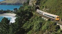 The Seasider, Dunedin & The Otago Peninsula, Ports of Call Tours