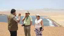 Private Tour: Full-Day Paracas Tour from Lima, Lima, Private Day Trips