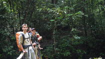 8-Day Rupununi Savanna and Kaieteur Water Falls Adventure from Georgetown, Georgetown, Multi-day ...