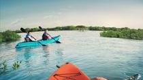 Abu Dhabi Eastern Mangroves Guided Kayaking Tour, アブダビ