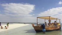 Dolphin Bay: Remote Natural Beach Getaway Day Cruise From Abu Dhabi, Abu Dhabi, null