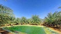 Private Overnight Tour in a Desert Farmhouse from Abu Dhabi, Abu Dhabi, Overnight Tours
