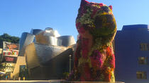 Guggenheim Museum Private Guided Tour, Bilbao