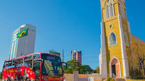 Sightseeing Bus Tour of Foz do Iguaçu, Foz do Iguacu, Bus & Minivan Tours