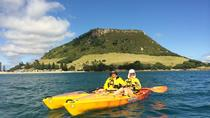 Tauranga Shore Excursion: Kayak Mount Maunganui, Tauranga, Ports of Call Tours