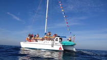 Private Catamaran Bay and Island Snorkel Adventure in Mazatlan, Mazatlan, Catamaran Cruises