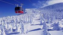 2-Day Juhyo Forest and Zao Onsen Tour from Tokyo, Tokyo, Overnight Tours