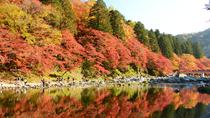 Autumn Foliage: Day Trip to Korankei Gorge from Nagoya, Nagoya, Day Trips
