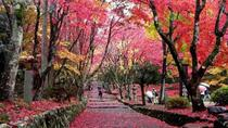 Biwako Valley and Keisoku-ji Temple Autumn Tour from Kyoto, Kyoto, Day Trips