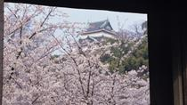 Cherry Blossom Day Trip to Wakayama Prefecture from Osaka, Osaka, Walking Tours