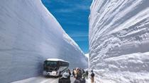 Day Trip to Tateyama Kurobe Alpine Route from Nagoya, Nagoya