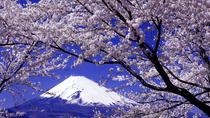 Day Trip To Yamanashi Prefecture Including Wine and Fruit Tasting from Tokyo, Tokyo, Day Trips