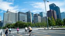 Half-Day Tokyo Cycling Tour with an English-Speaking Professional Guide, Tokyo, Bike & Mountain ...