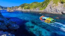 Izu Peninsula 2-day Bus Tour from Tokyo, Tokyo, Multi-day Tours