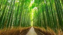 Private Full-Day Charter Tour: Kyoto, Osaka, and Nara Sightseeing from Kyoto, Kyoto, Private Day ...