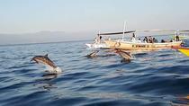 Bali Dolphin Sunrise Tour, Kuta, Cultural Tours
