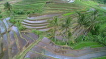 Private Tour: Discover Northern Bali Day Tour, Bali, Private Sightseeing Tours