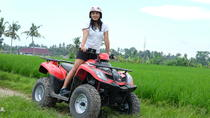 Private Tour: Full-Day Quad Bike Tour with White Water Rafting from Bali, Bali, Private Sightseeing ...