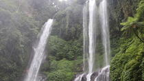 Private Tour: Sekumpul Waterfalls Hiking Tour, Bali, Private Sightseeing Tours