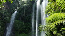 Private Tour: Sekumpul Waterfalls Hiking Tour, Kuta, White Water Rafting