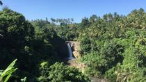 Tegenungan Waterfalls Hiking Tour, Ubud, null