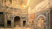 2-hour private tour of the ruins of Herculaneum, Campania, Private Sightseeing Tours
