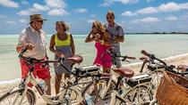 Bonaire Shore Excursion: Electric Bike Tour of the South, Kralendijk, Ports of Call Tours