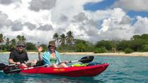 Mangrove Clear Bottom Kayaking, Kralendijk, Ports of Call Tours