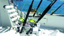 Private Punta Cana Deep-Sea Fishing Charter, Punta Cana, Fishing Charters & Tours
