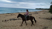 Punta Cana Horseback Riding on the Beach, Punta Cana, Horseback Riding