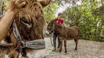 Donkey Trekking Portofino Food & Wine, Portofino, 4WD, ATV & Off-Road Tours