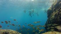 Snorkeling Tour in Paraggi Bay, Portofino, Snorkeling
