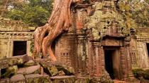 Angkor: Where Nature Meets History, Siem Reap, Private Sightseeing Tours