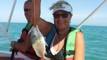 Fishing Tour from Isla Holbox, Isla Holbox, Fishing Charters & Tours