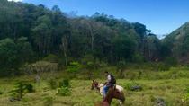 Horseback Ride to the Forgotten Jungle City, San Ignacio, Horseback Riding