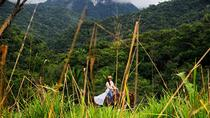 Jungle Waterfall Horseback Ride Tour from San Ignacio, San Ignacio, Hiking & Camping