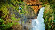 Full-Day Zip-Line, Cheetahs and Wine Adventure Tour from Cape Town, Cape Town, Multi-day Tours