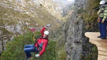 Full-Day Zip-Line, Cheetahs and Wine Adventure Tour from Cape Town, Cape Town, Ziplines