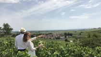 Small-Group Day Tour from Dijon to Beaune including Two Producers and Lunch, Dijon, Day Trips