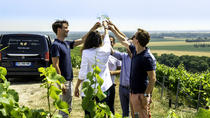 Small Group Half-Day Tour: Champagne Wine Tasting Departing from Epernay, Reims