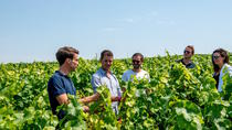 Small-Group Half-Day Tour to the Champagne Region from Reims with Champagne Tastings, Reims, Wine...
