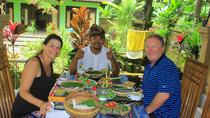 Authentic Bali: Overnight Stay at wayan house in a Traditional Village, Ubud, Multi-day Tours