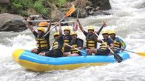 AYUNG RIVER RAFTING AND UBUD SWING, Ubud, Other Water Sports