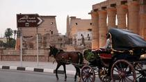 Private Luxor horse carriage tour from Luxor, Luxor, Horse Carriage Rides